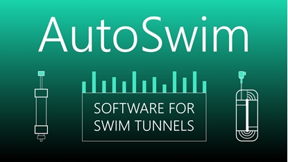 Picture of AutoSwim version 1 automated swimming performance software