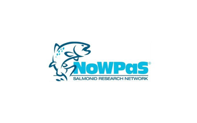 Sponsoring NoWPaS 2020 meeting